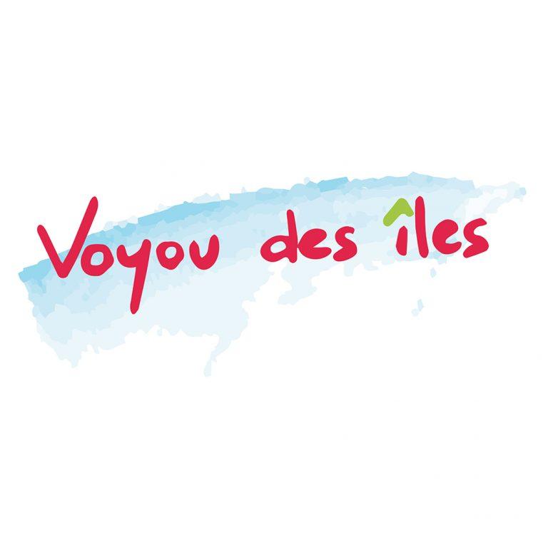 voyou